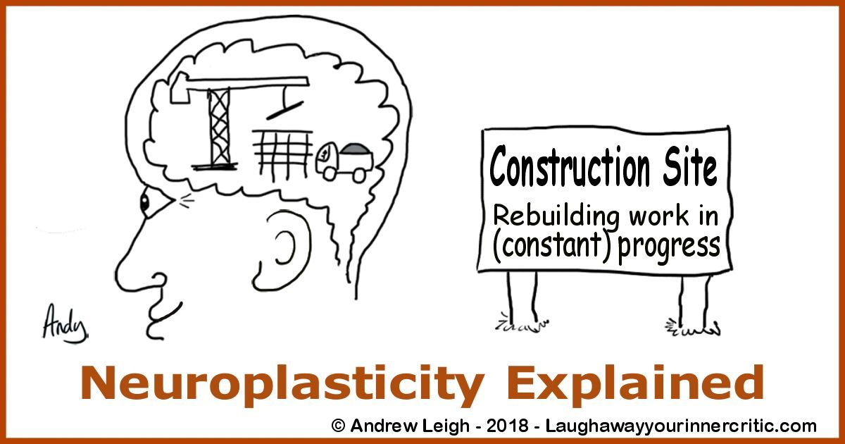 Neuroplasticity Explained